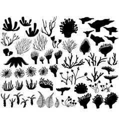 Set of marine life silhouettes vector
