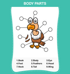 vulture vocabulary part of body vector image vector image