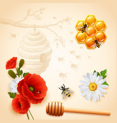 colored honey composition vector image
