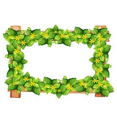 Frame design with leaves and flower vector image