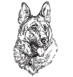 German shepherd hand drawing vector