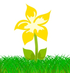yellow flower in the grass vector image