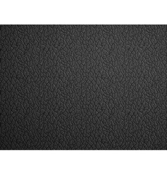 black leather Stock vector image vector image
