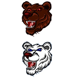 angry bear head for you design vector image