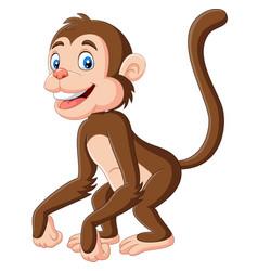 cute bamonkey cartoon on white background vector image