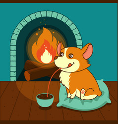 Cute dog of welsh corgi drinks hot chocolate with vector
