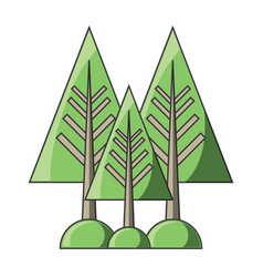 pine trees icon vector image