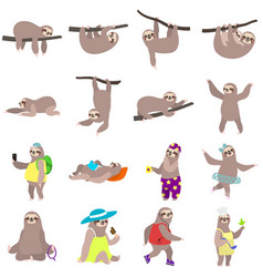Sloth icons set flat style vector