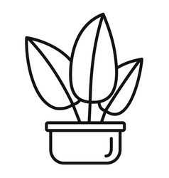 Tropical leaf houseplant icon outline style vector