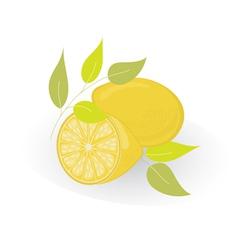 Lemon isolated on white vector image