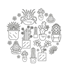 Cactuses and succulents icon set Houseplants Thin vector image vector image
