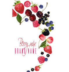 Berry mix falling banner vector