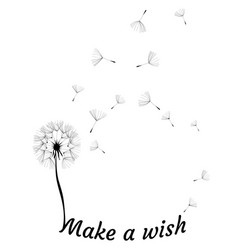 dandelion make a wish vector image