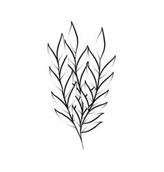 Minimalist tattoo foliage leaves decoration line vector
