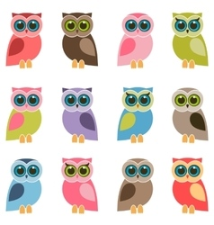 set of colorful owls and owlets vector image