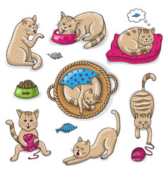 Set of cute cartoon cats on a white background vector
