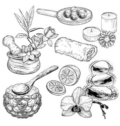 Set spa and beauty care sketch organic vector