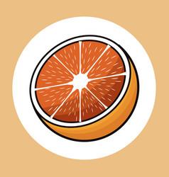 half orange healthy fresh image vector image