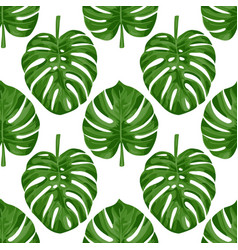 monstera seamless pattern vector image