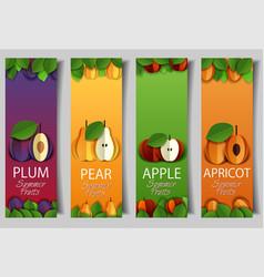 paper cut apple pear apricot plum banner vector image