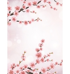 Realistic japan cherry branch EPS 10 vector