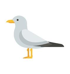 Seagull bird vector