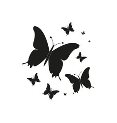 silhouettebeautiful butterflies isolated on a vector image