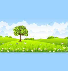 summer landscape with flowers and butterflies vector image