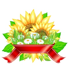 sunflower label design vector image
