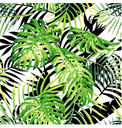 tropical plants watercolor pattern black and vector image