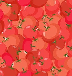 Tomato pattern Seamless background with red vector image