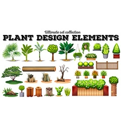 Many kind of plants vector image vector image