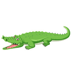 A green crocodile open mouth vector