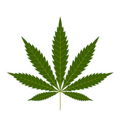 cannabis leaf icon green silhouette indica sativa vector image