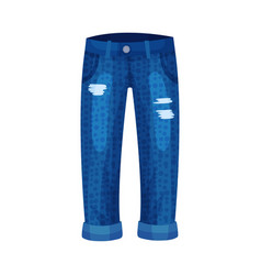 Denim blue ripped loose pair jeans with side vector