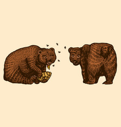 Grizzly bears hunting brown wild animal eats vector