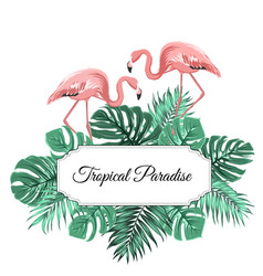Tropical paradise banner border frame decorated vector