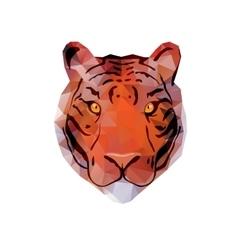 Abstract Tiger Head vector image