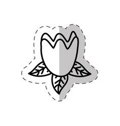 tulip flower cut line vector image vector image