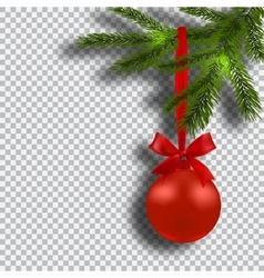 Christmas card Green branches of a Christmas tree vector image