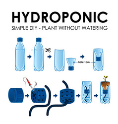 diagram of a hydroponics setup vector image