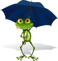 frog and umbrella vector image vector image