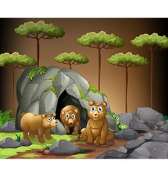 Three bears living in the cave vector