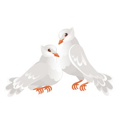 Two wedding doves isolated on white background vector