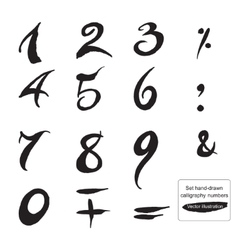 Set hand-drawn ink calligraphy numbers and symbols vector image