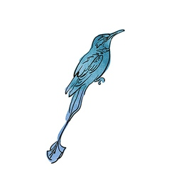 Artistic bird sketch vector