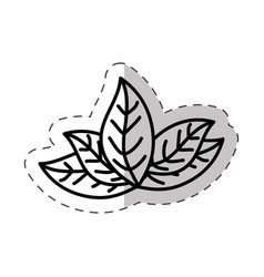 leaves plant natural cut line vector image