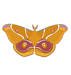 Orange moth isolated on a white background vector