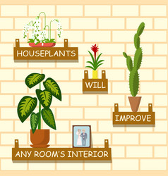 home flowers for interior vector image