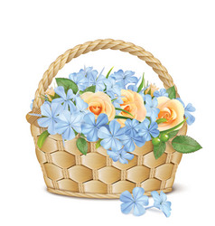 bouquet of roses and phlox in a basket vector image